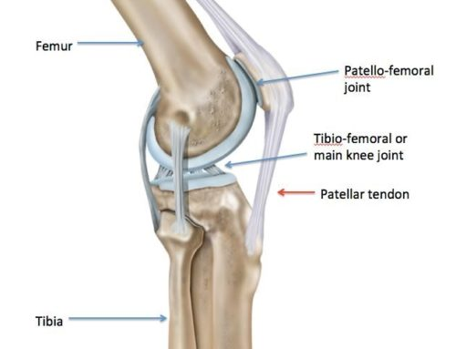 Could a Physiotherapist help me with the pain I have at the front of my knee?